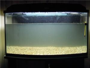 аквариум с водой