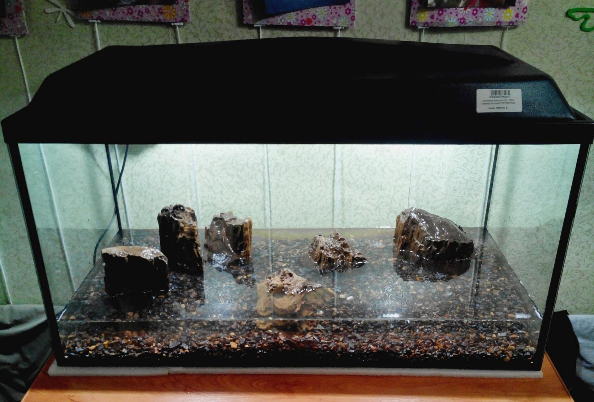 Камни в аквариум своими руками в домашних условиях 62
