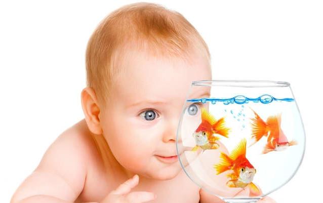 малыш смотрит на рыбок