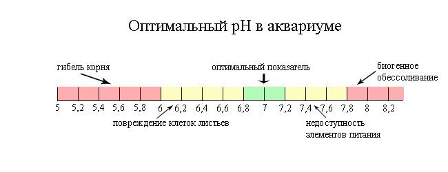 оптимальный ph